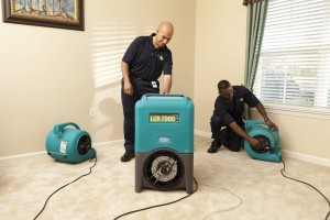 Air Movers w/ Dehumidifier